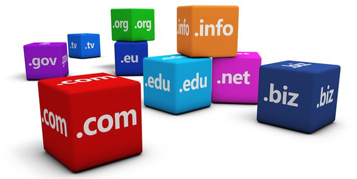 MSISP Domains